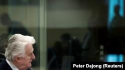 Radovan Karadžić tokom izricanje konačne presude.