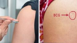 Vaccinul BCG și COVID-19. Opinia unui profesor bulgar