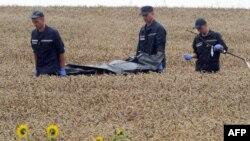 Рятувальники несуть тіло однієї з жертв катастрофи літака на Донеччині, 19 липня 2014 року