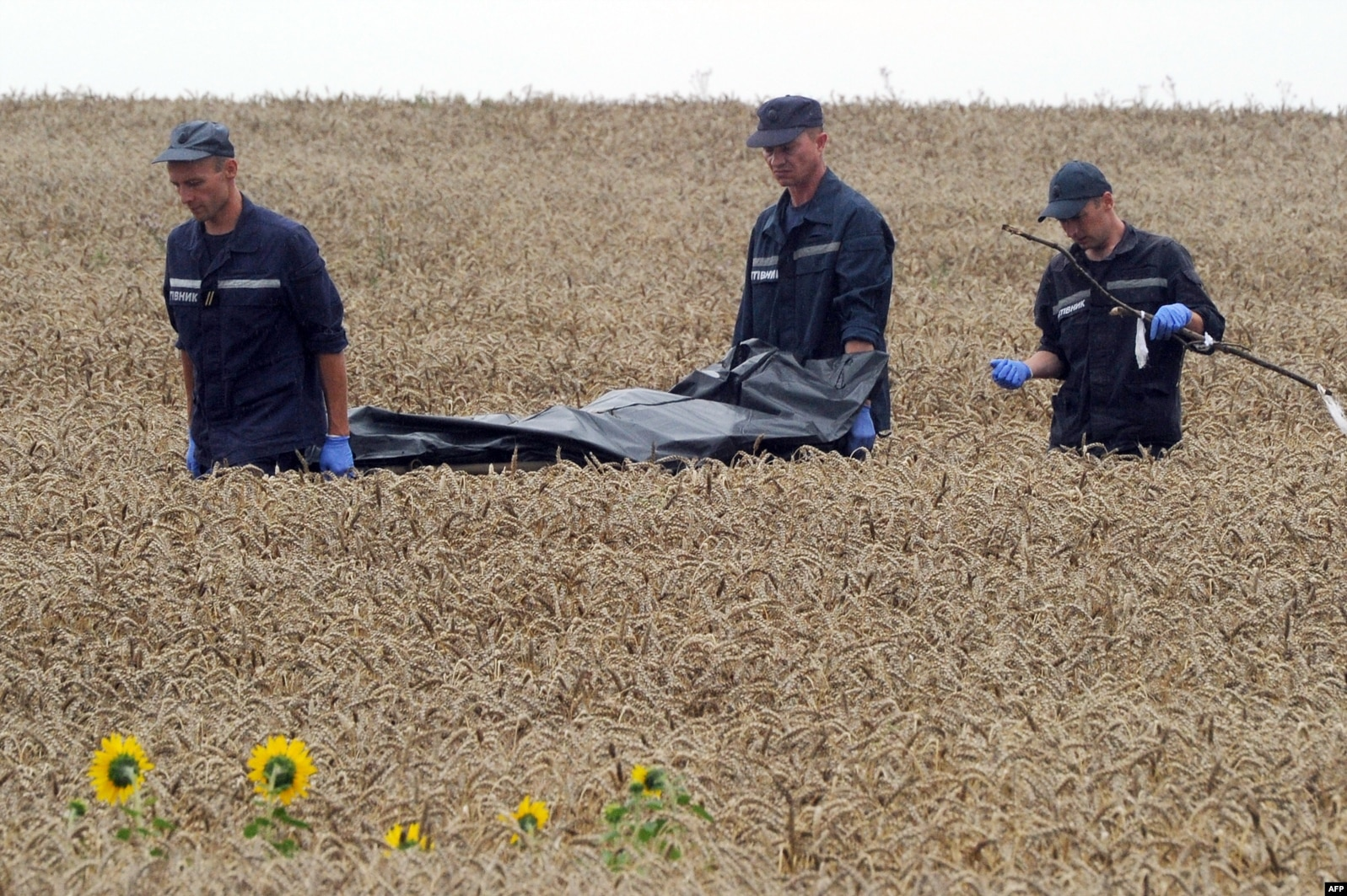 Құтқарушылар MH17 ұшағы құлаған орында табылған мәйіттерді әкетіп барады. 19 шілде 2014 жыл.
