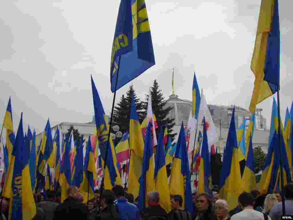 Учасники мітингу тримають у руках прапори із символікою Блоку Юлії Тимошенко, партій «Всеукраїнське об'єднання «Свобода», «Народний рух України», а також національні та прапори інших організацій.