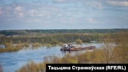 Луковая гара на рацэ Бярэзіна г. Бабруйск 2014г, аўтар: Тацьцяна Странкоўская