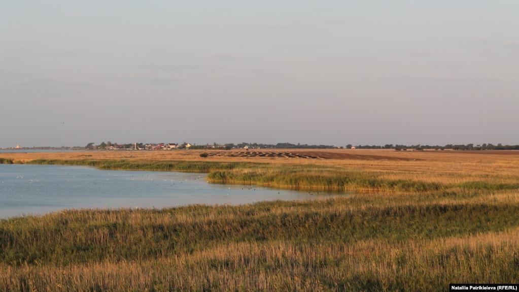 На крыше Границы установлена наблюдательный башня, откуда исследователи могут наблюдать за птицами