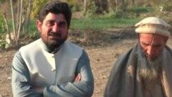 کوز دیر کې ساجد افغان د پښتنو پرون ژوندي ساتلو هڅه کوي