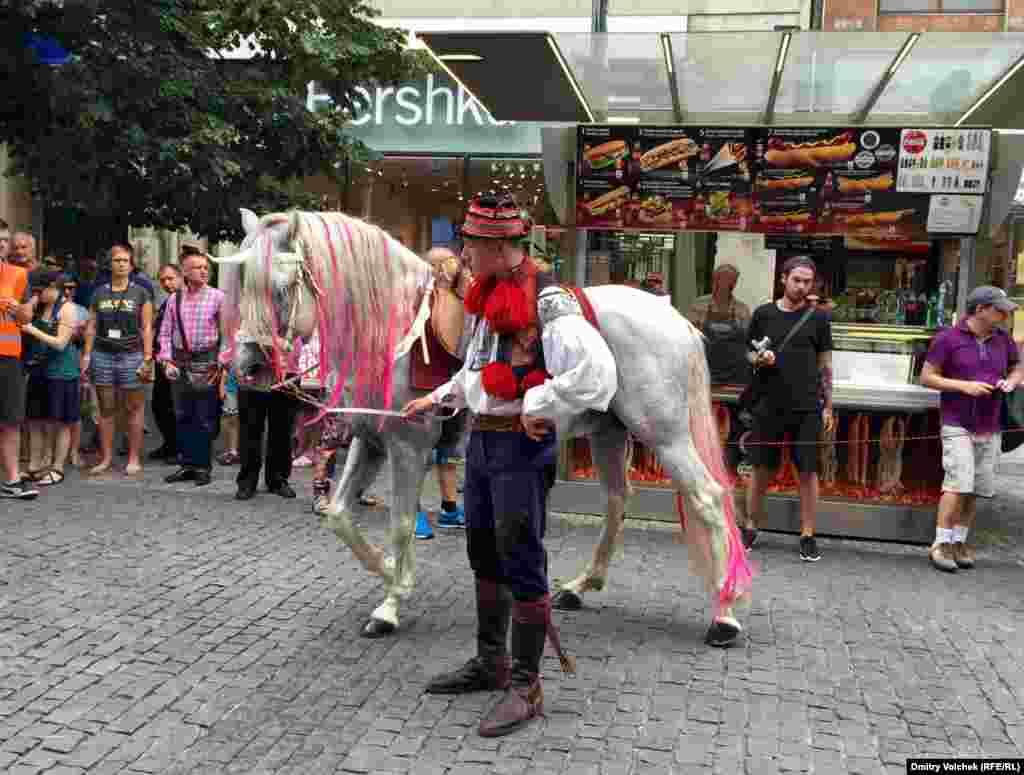 Как и в прошлом году, открывает шествие наездник на розовой кобыле
