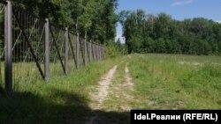 Лес уже успели обнести забором