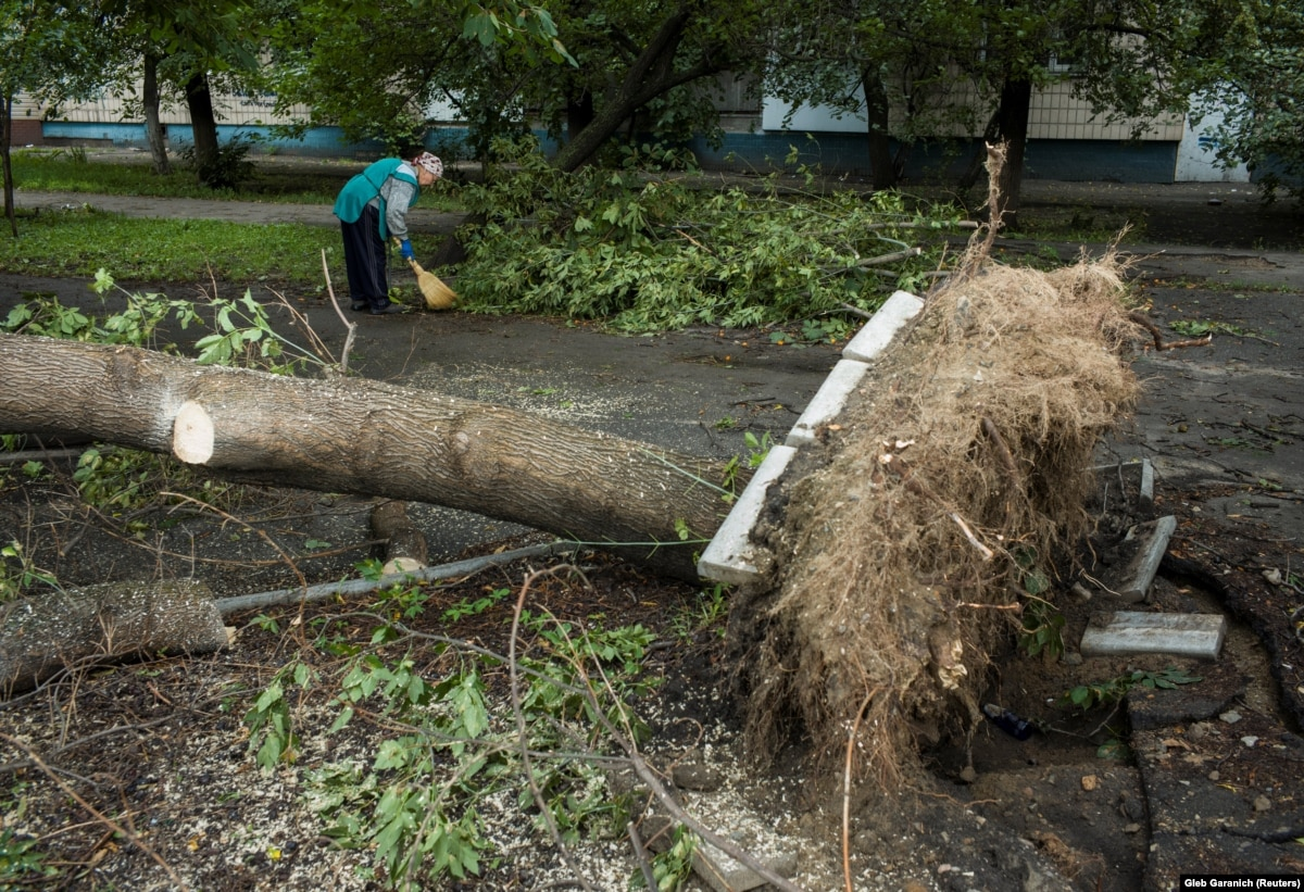 Непогода в Днепропетровской области: один человек погиб, 2 ранены, повалены сотни деревьев