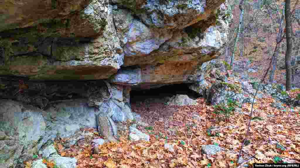 У маленькій печері під скелею можуть сховатися від негоди невеликі тварини
