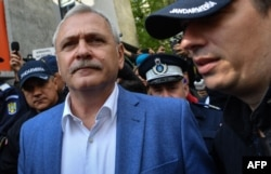 "The former leader of the ruling Social Democrat Party, Liviu Dragnea: ""Men marrying animals"""