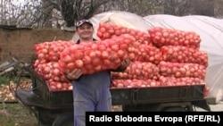 Macedonia - No ransom onions in Macedonia.
