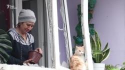 Обстріляне з установки «Град» Новолуганське: люди оговтуються і розбирають завали (відео)