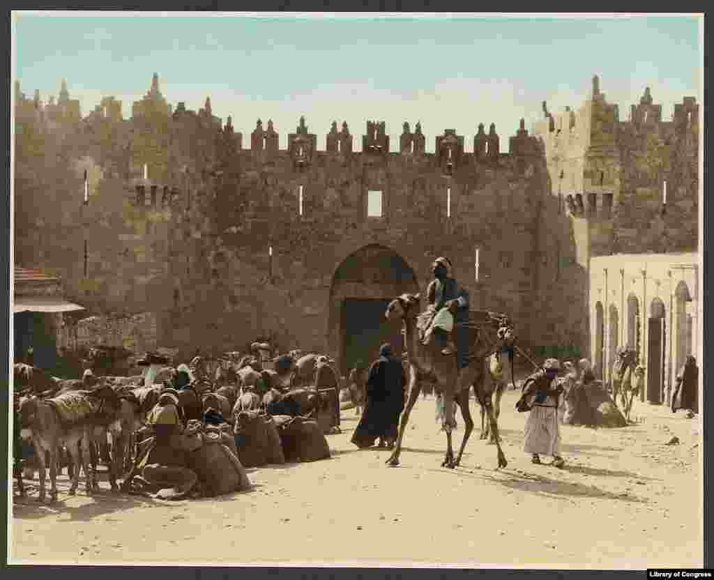 A pack train outside the Damascus Gate. The city currently has a population of 780,000. A League of Nations report in 1920 put the entire population of Palestine at just 700,000.