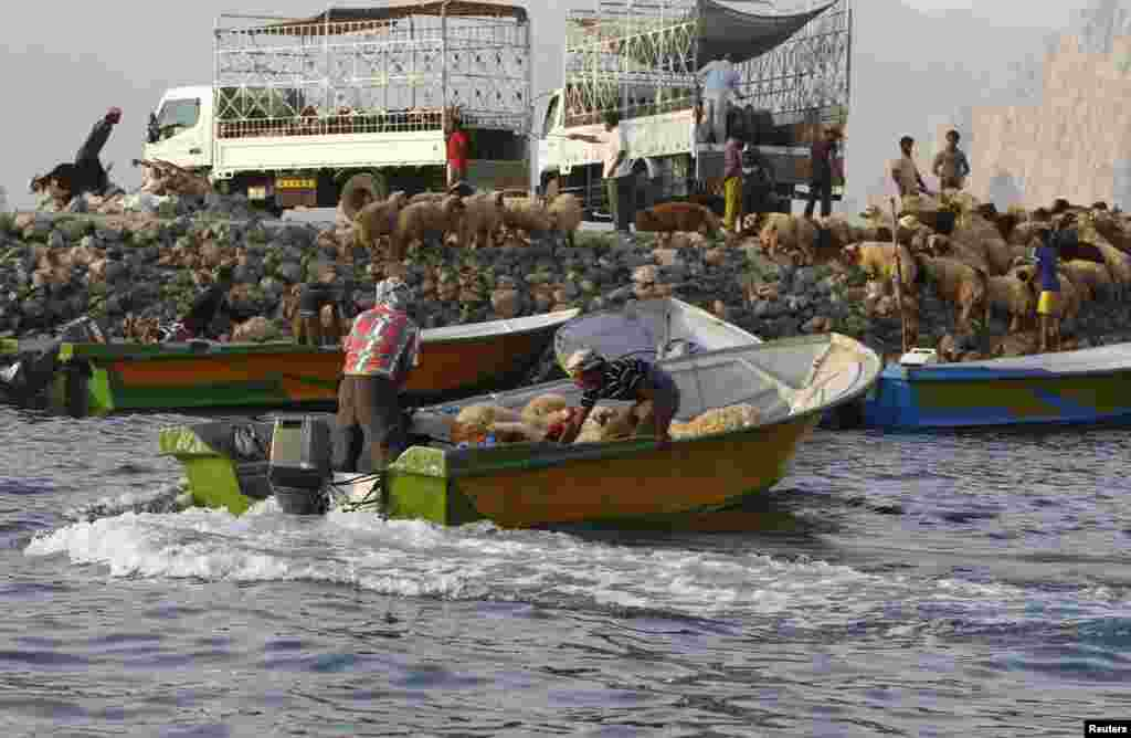 Iranian smugglers in boats while sheep are loaded at the Omani port of Khasab on September 26 2012.