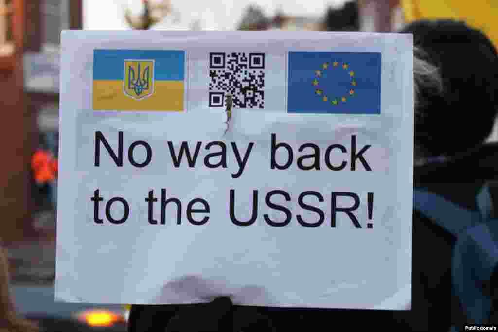 Евромайдан в Вашингтоне (фото с Facebook Myroslava Gongadze)