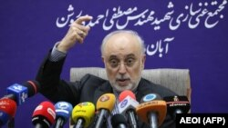 Head of the Atomic Energy Organisation of Iran (AEOI), Ali Akbar Salehi speaks at a press conference following a visit at the nuclear power plant of Natanz, November 4, 2019