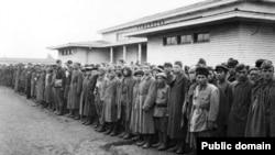 Солдаты Красной армии, оказавшиеся в немецком плену в годы Второй мировой войны.