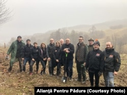 Împădurire cu echipa de la Academia Titi Aur, la ocolul silvic Slănic Prahova (2019).