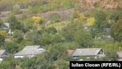 Vedere a satului Negrești