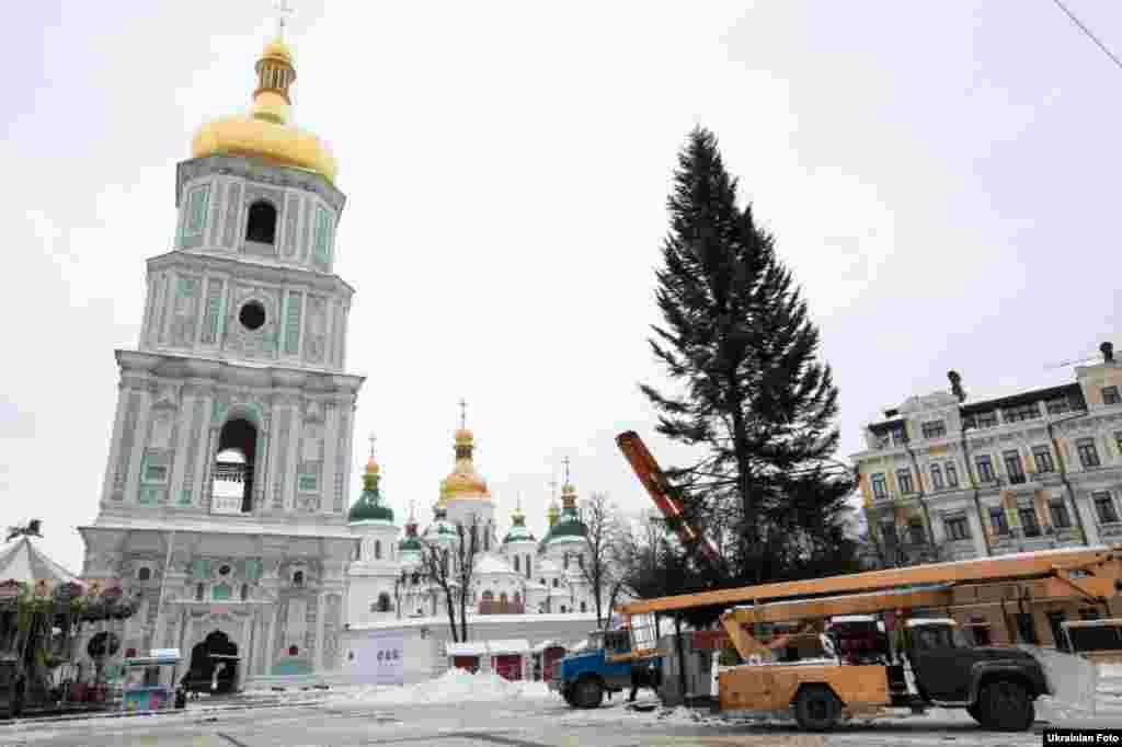 Встановлення новорічної ялинки на Софійській площі в Києві, 5 грудня 2016 року