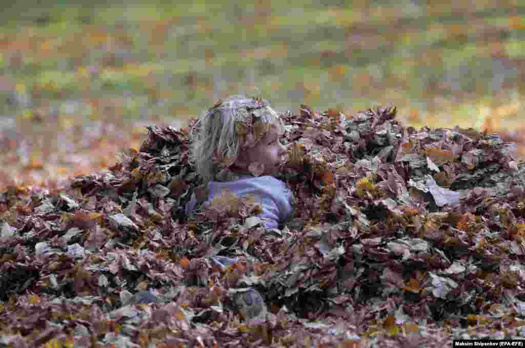 A boy playing in fall leaves at the Ostafyevo park in Moscow. (epa-EFE/Maxim Shipenkov)