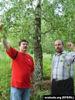 Пад бярозай, што вырасла на дубовым пні. Крынічнае, 2007 г.