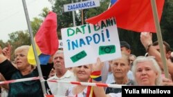 2015 - anul protestelor