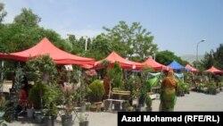 مهرجان الزهور في السليمانية