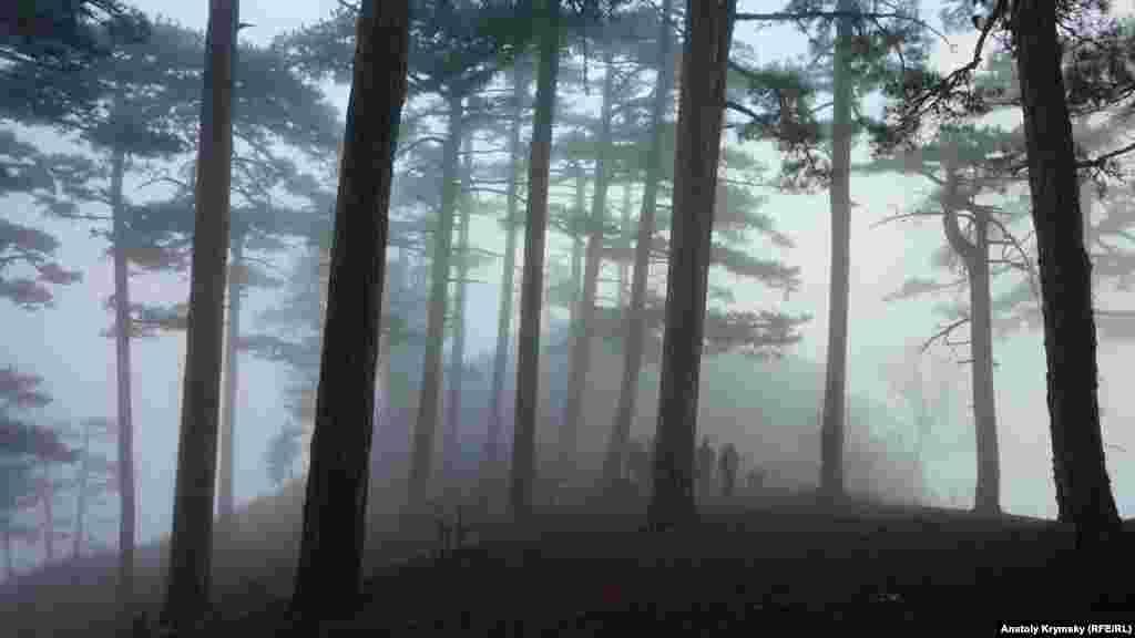 Во время спуска, Кореизскую тропу вместе с симферопольскими туристами-любителями несколько раз обвалакивали то ли туманы, то ли низкая облачность со стороны Черного моря