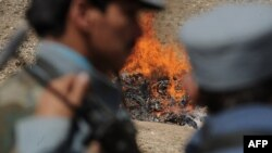 Afghan policemen stand by as a pile of narcotics is burned on the outskirts of Kabul in August.