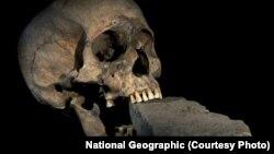 جمجه متعلق به زنی سالخورده که تکه آجری در دهانش قرار داشت؛ فرمی از جنگیری که زمانی برای مقابله با «خونآشامها» در ایتالیا رواج داشت.
