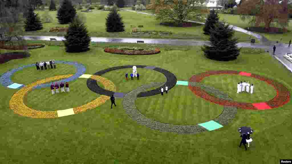 Олимпийские кольца из 25 тысяч живых цветов, Лондон