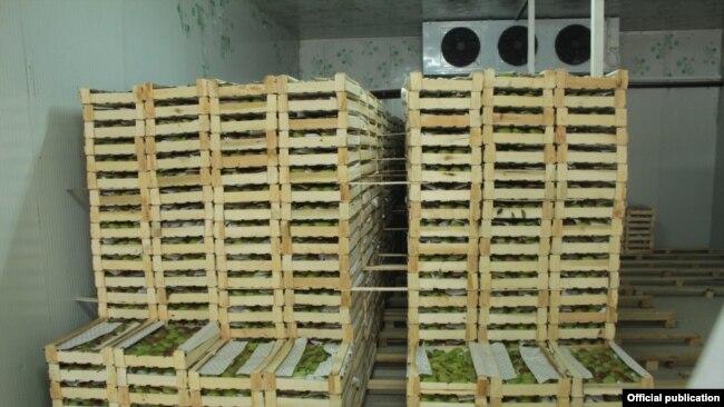 Кыргызстандагы соода-логистикалык борборлордун биринин кампасында сакталган товар.