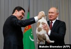 Гурбангулы Бердымухамедов (слева) дарит щенка алабая Владимиру Путину во время встречи в Сочи. 11 октября 2017 года.