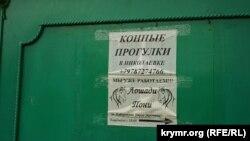 Объявление в Николаевке