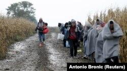 Migranti u blizini Šida na putu ka hrvatskoj granici