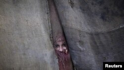 A Pashtun girl peeks through the doorway to her family dwelling in Peshawar.
