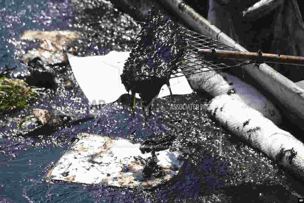 """Az olaj beszivárgott a Talbert-lápvidékre is. Kim Carr, Huntington Beach település polgármestere """"esetleges ökológiai katasztrófának"""" nevezte a szivárgást"""