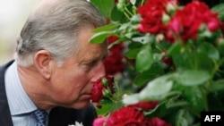 Принц Чарльз на выставке цветов