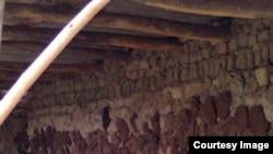 Пунгонликлар қишга ананавий усулда тайёргарлик кўришади