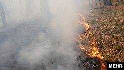 Iran – Fire in the Goolestan forest, Golestan, 19Nov2010