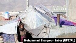 وضعیت آواره ها در ولایت هرات