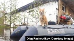 Олег Решетников смог забрать семью из подтопленного дома только через три дня