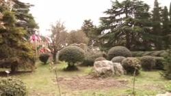 «Боюсь, восстание будет». Крымчане против застройки парка в Форосе (видео)