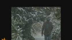 Մարզերում առաջին ձյունը տեղաց