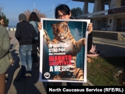 Активисты требуют запретить цирки с животными