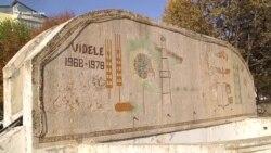 Votul în Videle, fieful doamnei Dăncilă