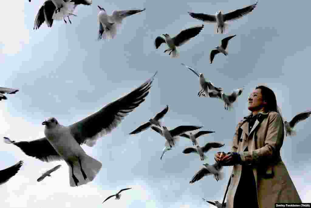 Девушка кормит чаек на берегу Черного моря в Сочи, Россия. (ТАСС / Дмитрий Феоктистов)