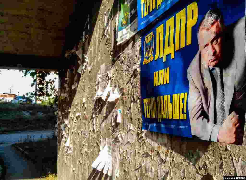 ЛДПР пытается набрать популярность за счет известности своего эпатажного лидера Владимира Жириновского