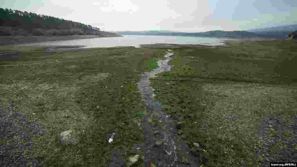 Питают водохранилище и стекающие с окружающих холмов ручейки