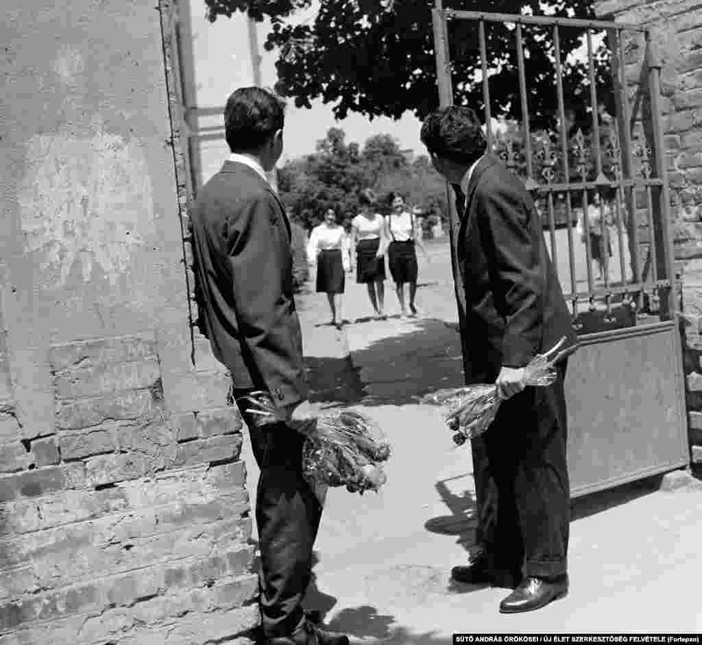 Romantic Romanian students wait for a group of young women in Targu Mures in 1964.